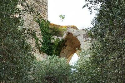 15 Août 2017, Portel-des-Corbières, 3-Notre Dame des Oubiels